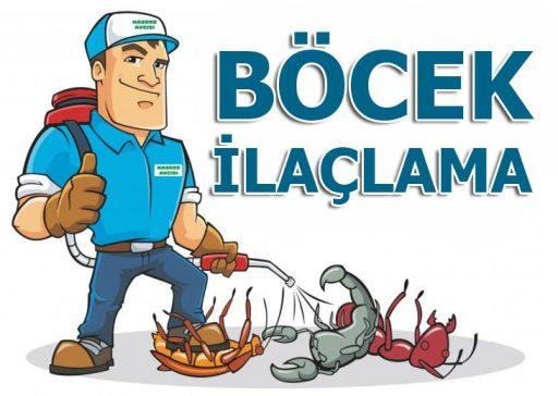 bocek-ilaclama-ust-banner